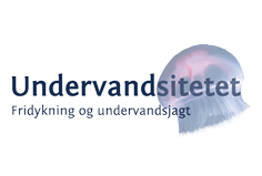 Undervandsitetet